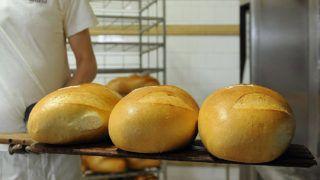 Balmazújváros, 2016. december 29.Pincés János kisütő a kész kenyereket rekeszekbe rakja a balmazújvárosi Balmaz Sütőde Kft.-ben. Közel két éves előkészítés után tizenöt pontban változott meg a Magyar Élelmiszerkönyv, ami a kenyér és pékáruk beltartalmának pontos, kötelező módosításait tartalmazza. Az új előírások gyakran a technológiák átírásával járnak.MTVA/Bizományosi: Oláh Tibor ***************************Kedves Felhasználó!Ez a fotó nem a Duna Médiaszolgáltató Zrt./MTI által készített és kiadott fényképfelvétel, így harmadik személy által támasztott bárminemű – különösen szerzői jogi, szomszédos jogi és személyiségi jogi – igényért a fotó készítője közvetlenül maga áll helyt, az MTVA felelőssége e körben kizárt.