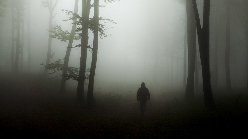 Spooky silhouette in scary misty forest