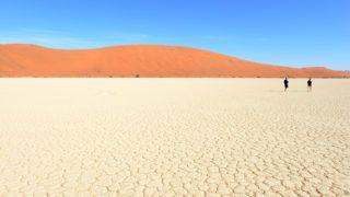 NAMIBIA. NAMIB DESERT. SOSSUSVLEI. DEAD VLEI IS KNWON FOR ITS FOREST OF DEAD TREES.