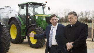 Alcsútdoboz, 2014. november 18. Orbán Viktor miniszterelnök (j) és Mészáros Lõrinc (Fidesz-KDNP) felcsúti polgármester a Búzakalász 66 Felcsút Kft. bányavölgyi mangalicatelepének avatásán a Fejér megyei Alcsútdobozon 2014. november 18-án. MTI Fotó: Koszticsák Szilárd