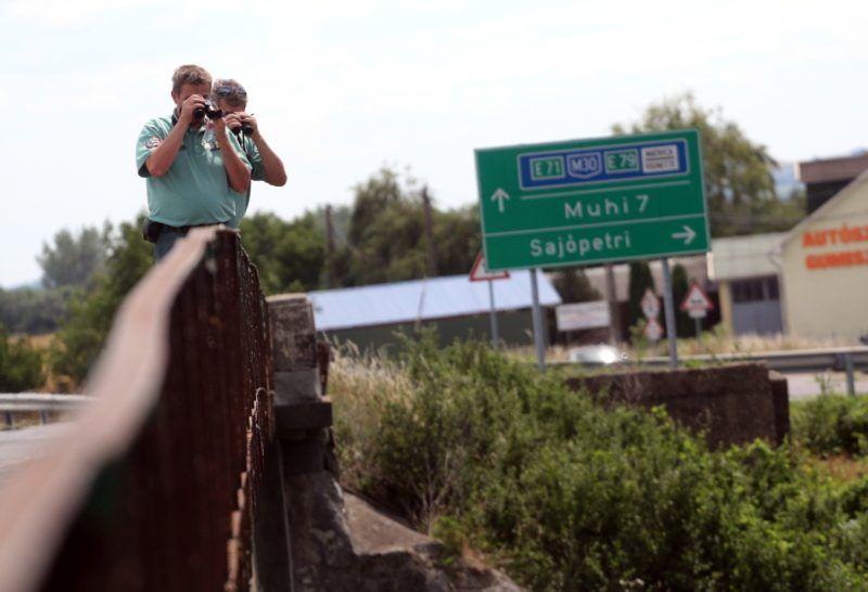Sajópetri, 2018. június 17. A Bükki Nemzeti Park természetvédelmi õrei távcsõvel figyelik a Sajót és a part menti területeket a Borsod-Abaúj-Zemplén megyében felbukkant medve után kutatva 2018. június 17-én Sajópetri határában. Június 16-án Sajókeresztúr fõterére tévedt egy medve, 17-én hajnalban pedig Miskolcon látták. MTI Fotó: Vajda János