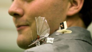A person presents the DelFly Micro, an observation tool, on July 23, 2008 in Delft, The Netherlands. The small plane weights just 3 grams and it's length is 10 centimeters. It is ddjusted with a camera and from distance movable. It has a maximum speed of 18 kilometres an hour. AFP PHOTO/ANP PHOTO ED OUDENAARDEN / netherlands out - belgium out (Photo by ED OUDENAARDEN / ANP / AFP)