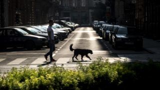 Budapest, 2018. május 30. Egy férfi sétáltatja kutyáját a Belvárosban 2018. május 28-án kora reggel. MTI Fotó: Szigetváry Zsolt