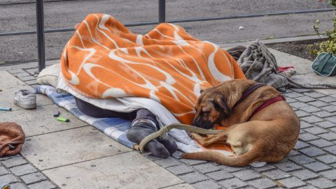 Budapest, 2017. október 7. A járdán, takaró alatt alvó hajléktalan pár lábánál kutyájuk pihen a fõváros VII. kerületében, a Madách téren. MTVA/Bizományosi: Róka László  *************************** Kedves Felhasználó! Ez a fotó nem a Duna Médiaszolgáltató Zrt./MTI által készített és kiadott fényképfelvétel, így harmadik személy által támasztott bárminemû – különösen szerzõi jogi, szomszédos jogi és személyiségi jogi – igényért a fotó készítõje közvetlenül maga áll helyt, az MTVA felelõssége e körben kizárt.