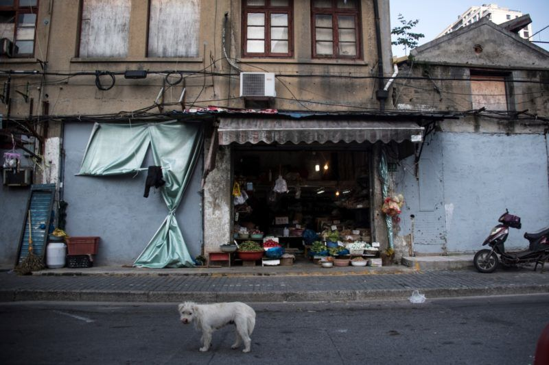 A dog stands on a street in front of a vegetable vendor on an old street in Shanghai on May 4, 2018. (Photo by Johannes EISELE / AFP)