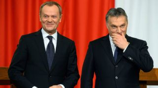 Polish Prime Minister Donald Tusk (L) and his Hungarian counterpart Viktor Orban (R) stand together at the Delegation Hall of the parliament building in Budapest on January 29, 2014 prior to their joint press conference. Tusk is on a one-day official visit to Hungary.     AFP PHOTO / ATTILA KISBENEDEK (Photo by ATTILA KISBENEDEK / AFP)
