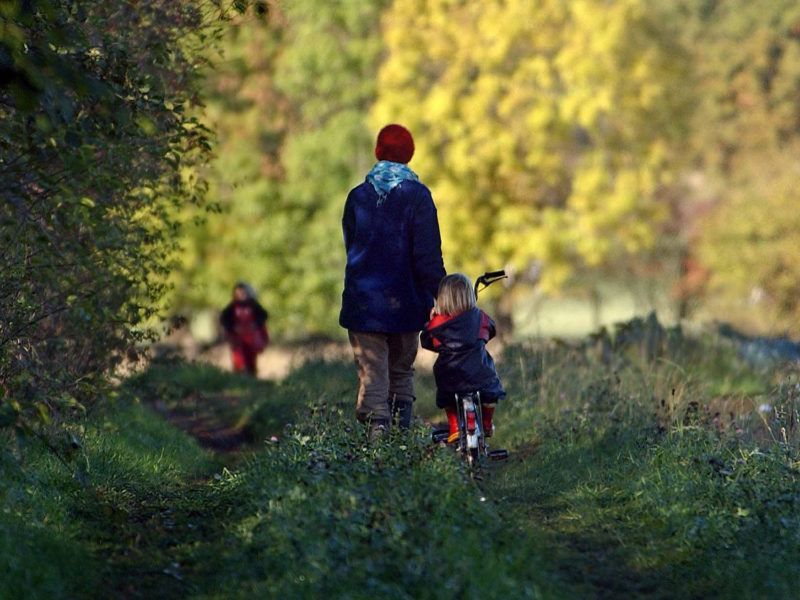 (dpa) - A mother takes a walk with her children on a sunny autumn day, near Kattendorf, northern Germany, 15 October 2003.