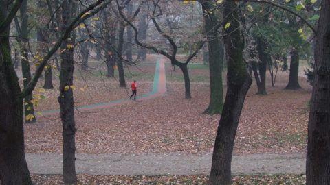 Budapest, 2018. november 10. Futópályán kocogó fõvárosi lakos párás ködös õszi reggelen a Városmajor parkjában. MTVA/Bizományosi: Jászai Csaba  *************************** Kedves Felhasználó! Ez a fotó nem a Duna Médiaszolgáltató Zrt./MTI által készített és kiadott fényképfelvétel, így harmadik személy által támasztott bárminemû – különösen szerzõi jogi, szomszédos jogi és személyiségi jogi – igényért a fotó készítõje közvetlenül maga áll helyt, az MTVA felelõssége e körben kizárt.