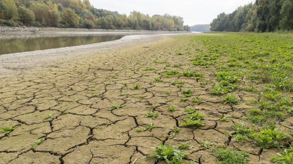 Medve, 2018. október 16. A Duna mellékágának ártere a felvidéki Medve határában 2018. október 16-án. Az augusztus óta tartó csapadékszegény idõjárás miatt a folyó vízállása a magyarországi szakaszon ismét az eddig mért legkisebb értékek közelében vagy alatta alakul a vízmércéken. MTI/Krizsán Csaba
