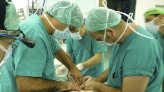 Firenze, 2010. július 30. 2010. július 30-án közreadott kép, amelyen Dr. Paolo MACCHIARINI (b) és sebészcsoportja légcsövet ültet át egy rákos betegbe a firenzei AOU Careggi kórházban. A transzplantációt egy új, a sebészetet és a biotechnológiát ötvözõ eljárással végezték el, amelyben a beteg õssejtjeit alkalmazzák. A teljesen lecsupaszított új szervbe a mûtét elõtt juttatnak õssejteket, és azok két-három hónap alatt új szövetekkel borítják be a transzplantátumot, így szinte egy teljesen új, de a beteg szervezetével biológiailag rokon légcsõ jön létre, ez pedig feleslegessé teszi a kilökõdést gátló gyógyszerek szedését. A légcsõ az új szövetek kialakulásáig is mûködõképes. A kórház sebészei egy 31 éves cseh és egy 19 éves brit daganatos nõi betegbe ültettek új légcsövet július 3-án és 13-án, és már mindkét páciens távozott a gyógyintézménybõl. (MTI/EPA/Carlo Ferraro)