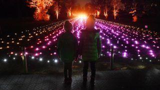 London, 2018. november 21. Gyerekek a karácsonyi fényekkel kivilágított nyugat-londoni Kew kertben 2018. november 21-én. Az ünnepi fényárhoz mintegy egymillió izzót használtak fel és 2019. január 5-ig látható. MTI/EPA/Andy Rain