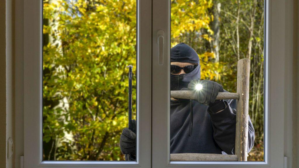 Burglar is standing on a ladder looking through a window.