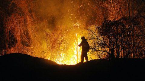 Fót, 2012. március 27.Tűzoltó dolgozik 2012. március 27-én éjszaka a Pest megyei Fótligeten. Korábban egy bevásárlóközpont melletti erdős területen mintegy 6 hektáron csaptak fel a lángok. A nagy erőkkel kiérkező tűzoltók többórás munka árán tudták csak a tüzet eloltani. A tűz keletkezési okát szakértők vizsgálják.MTI Fotó: Lakatos Péter