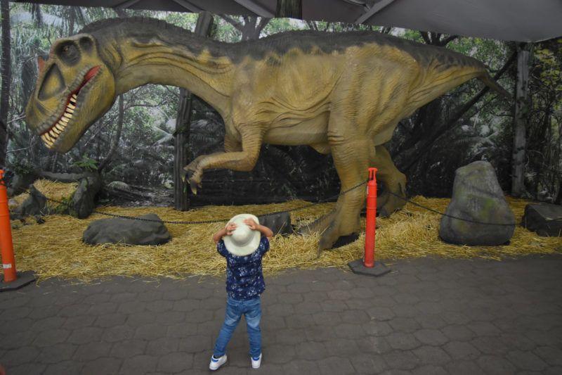 NAUCALPAN DE JUAREZ, MEXICO - JULY 21: A animatronic of  Allosaurus  looks during a tour as part of the exhibition 'Dinasaurios Animatronicos'  at Parque Naucalli on July 21, 2018 in Naucalpan de Juarez, Mexico.  (Photo by Carlos Tischler/Getty Images)