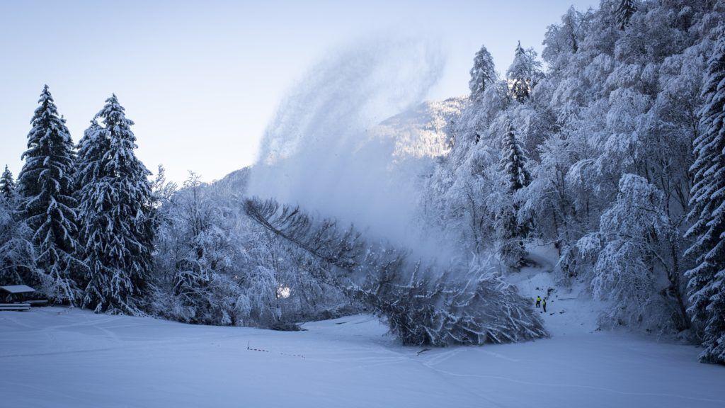 Zürich, 2018. december 12. Kivágják Svájc legmagasabb, La Panera néven ismert fenyõfáját a Graubünden kantonbeli Luven közelében 2018. december 12-én. A 48 méter magas, 260 évesnek becsült fenyõt kártevõ támadta meg, ezért pusztulásra volt ítélve. MTI/EPA/KEYSTONE/Gian Ehrenzeller