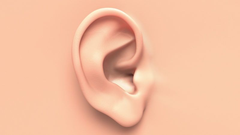 Human ear close up without any hair surrounding.