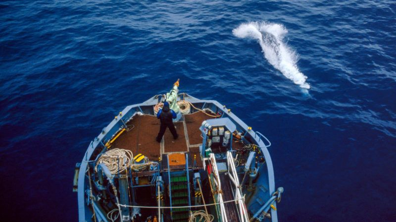 A crew member mans the harpoon on the deck of a Japanese whaling vessel, during a scientific research mission in the Antarctic, 1993. (Photo by Mark Votier/Hulton Archive/Getty Images)