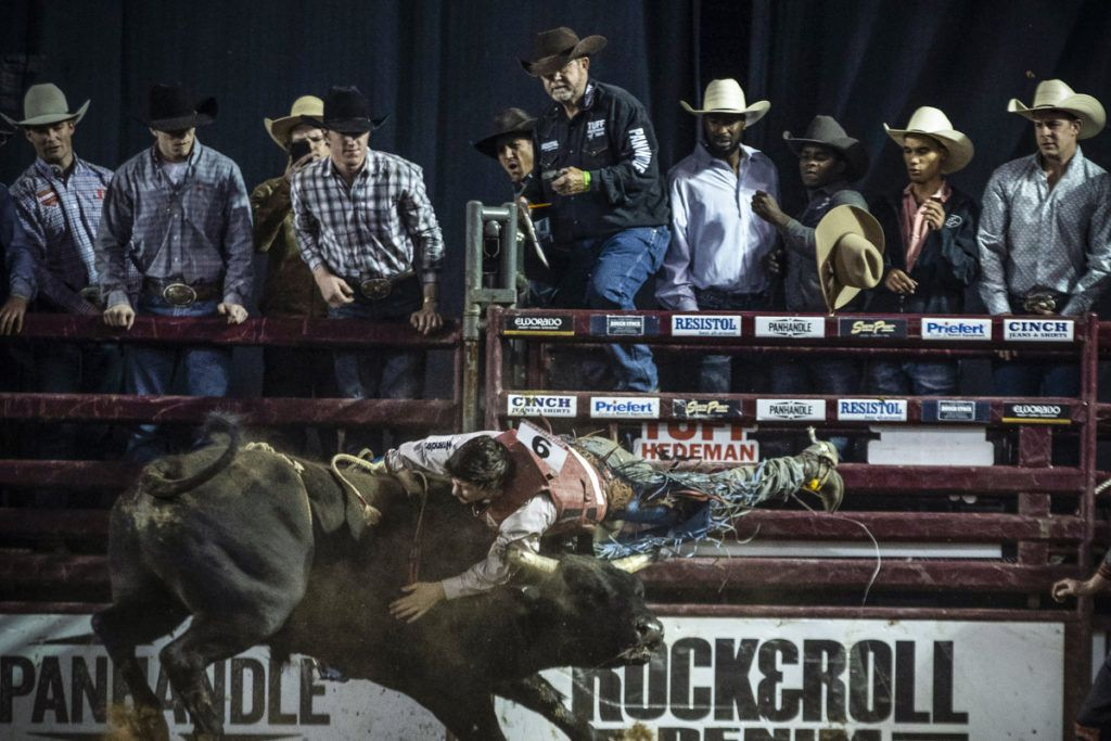 Roscoe Jarboe of New Plymouth Idaho gets bucked off a bull during the Tuff Hedeman Bull Riding Tour at the El Paso County Colosseum on February 16, 2019. - About 25 riders competed for about $30,000 in prize money for this Tuff Hedeman Bull Riding Tour stage named after the four time bull riding world champion who grew up in El Paso, Texas. (Photo by PAUL RATJE / AFP)