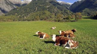Austria, Tyrol, Otztal, Umhausen