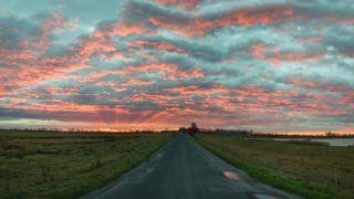 Természet - Fertőd - Napfelkelte