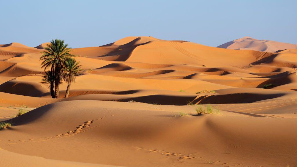 Morocco. Sand dunes of Sahara desert