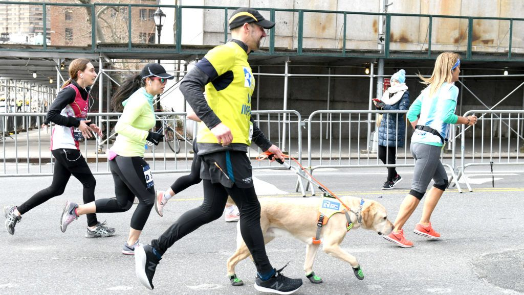 NEW YORK, NEW YORK - MARCH 17: EDITORIAL USE ONLY Guiding Eyes for the Blind President and CEO, Thomas Panek, runs the first ever 2019 United Airlines NYC Half Led Completely by Guide Dogs, with Gus on March 17, 2019 in New York City.   Craig Barritt/Getty Images for Guiding Eyes For The Blind/AFP