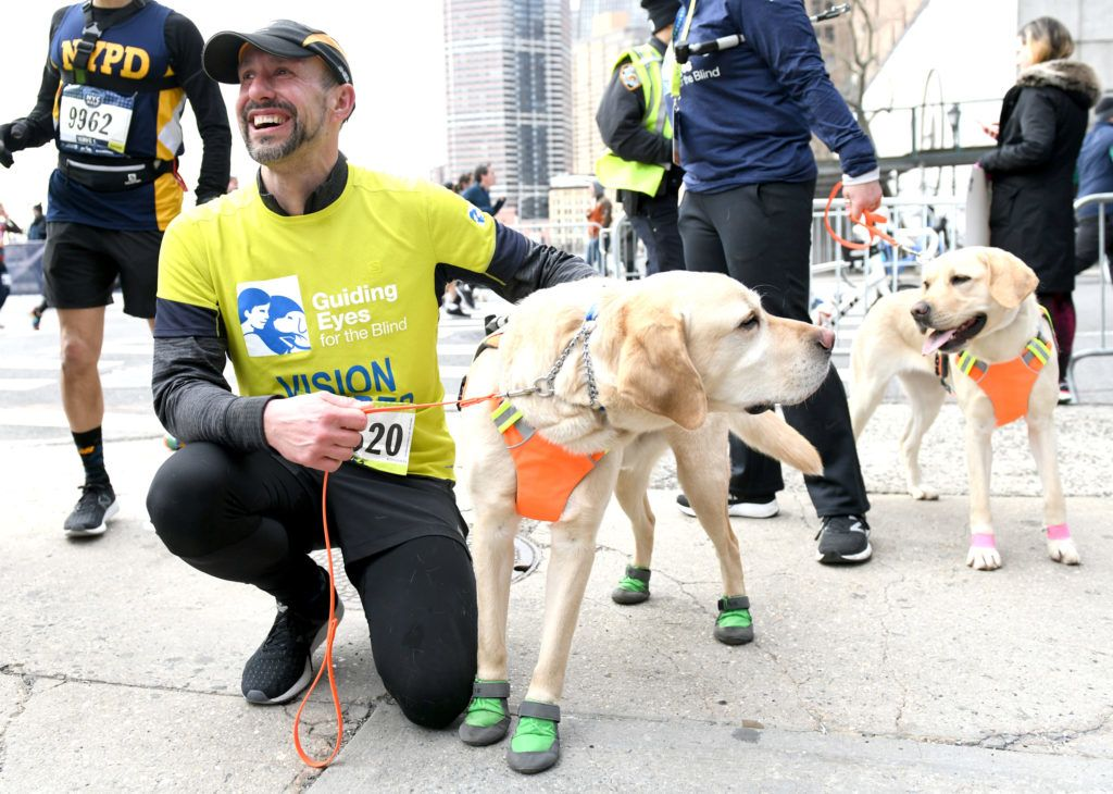 NEW YORK, NEW YORK - MARCH 17: EDITORIAL USE ONLY Gus and Waffle join Guiding Eyes for the Blind President and CEO, Thomas Panek, as he runs First-Ever 2019 United Airlines NYC Half Led Completely by Guide Dogs on March 17, 2019 in New York City.   Craig Barritt/Getty Images for Guiding Eyes For The Blind/AFP