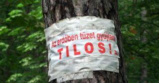 Budapest, 2012. június 10. Tûzrakást tiltó felirat egy fa törzsén a fõváros II. kerületében, a Látó-hegyi parkerdõben. MTVA/Bizományosi: Jászai Csaba  *************************** Kedves Felhasználó! Az Ön által most kiválasztott fénykép nem képezi az MTI fotókiadásának, valamint az MTVA fotóarchívumának szerves részét. A kép tartalmáért és a szövegért a fotó készítõje vállalja a felelõsséget.