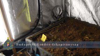 Érd, 2019. február 14. A Budapest-Pusztaszabolcs vasútvonal felújítása keretében megújuló érdi vasútállomás 2019. február 14-én. MTI/Máthé Zoltán