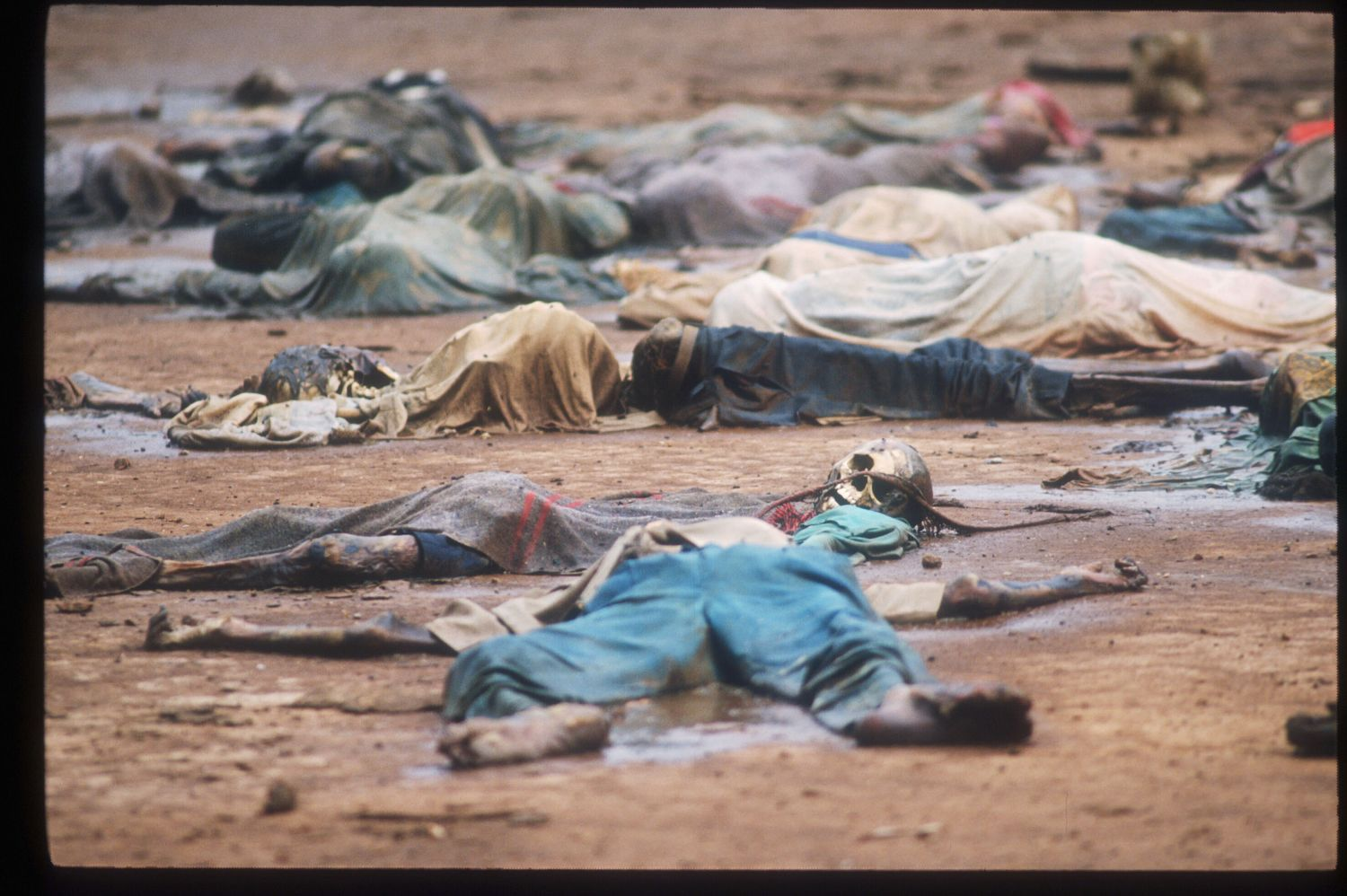188198 55: Skeletal remains are strewn on the grounds of the Catholic mission May 5, 1994 in Rukara, Rwanda. Hundreds of Tutsis were killed at the Rukara Catholic mission April, 1994 in one of the worst massacres of the Rwandan violence. (Photo by Scott Peterson/Liaison)