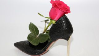 Pink rose in a female shoe. Black shoes with high heels. Rose next to a black shoe.
