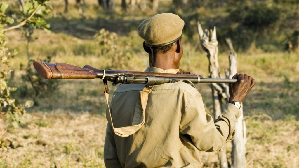 Park ranger in South Luangwa National Park, Zambia