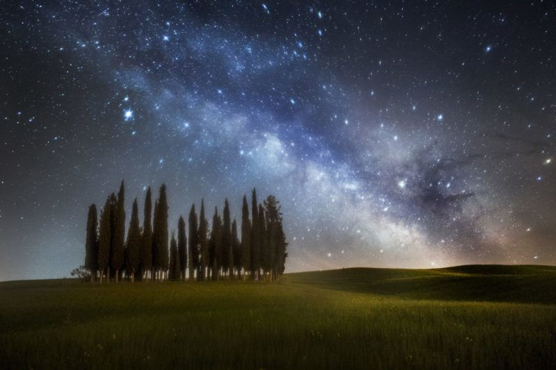 Cypress trees in Val d'Orcia, San Quirico d'Orcia, Siena, Tuscany, Italy.    Biosphoto / Alberto Ghizzi Panizza