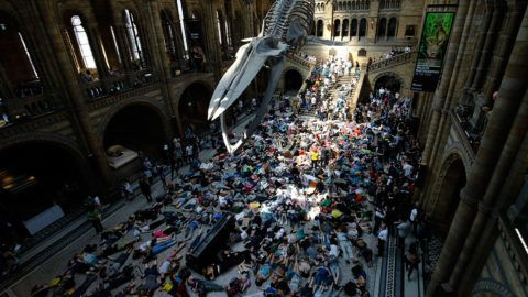 """Extinction Rebellion climate change activists perform a mass """"die in"""" under the blue whale in the foyer of the Natural History Museum in London on April 22, 2019, on the eighth day of the environmental group's protest calling for political change to combat climate change. - Climate change protesters who have brought parts of London to a standstill said Sunday they were prepared to call a halt if the British government will discuss their demands. Some 963 arrests have been made and 42 people charged in connection with the ongoing Extinction Rebellion protests. (Photo by Tolga AKMEN / AFP)"""