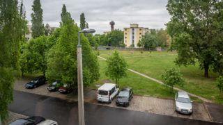 Image: 73887918, A csepeli Kozmosz sÈt·nyn·l lÈvı parkbÛl 25 f·t szedtek ki, hogy egy futÛp·ly·t, street workout parkot, nyilv·nos WC-t, ingyen wifit ÈpÌtsenek a parkba., Place: Budapest, Hungary, Model Release: No or not aplicable, Property Release: Yes, Credit: smagpictures.com