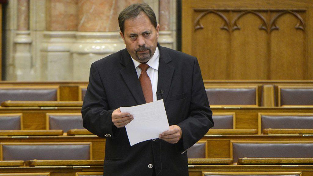 Budapest, 2015. június 10.Pócs János, a Fidesz parlamenti képviselője felszólal a mezőgazdasági termékpiacok szervezésének egyes kérdéseiről, a termelői és a szakmaközi szervezetekről szóló javaslat általános vitájában az Országgyűlés plenáris ülésén 2015. június 10-én.MTI Fotó: Soós Lajos