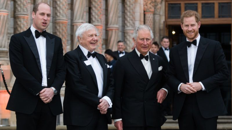 """LONDON, ENGLAND - APRIL 04: Prince William, Duke of Cambridge,  Sir David Attenborough, Prince Charles, Prince of Wales and Prince Harry, Duke of Sussex attend the """"Our Planet"""" global premiere  at Natural History Museum on April 04, 2019 in London, England. (Photo by Samir Hussein/Samir Hussein/WireImage)"""