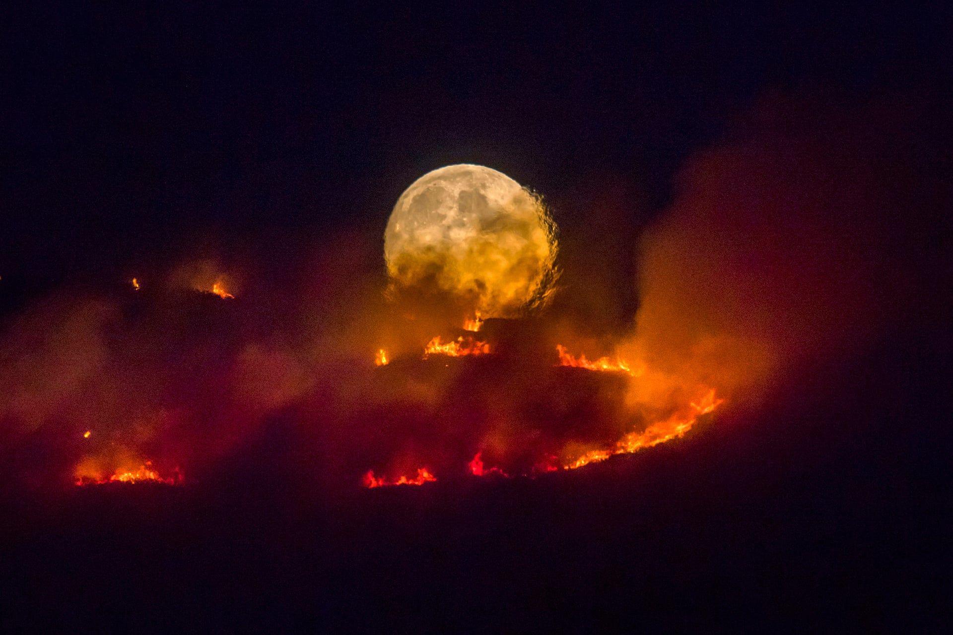 Telihold égő lápvidék mögött Manchaster közelében. Fotó: Anthony Devlin / Getty Images / thebppa