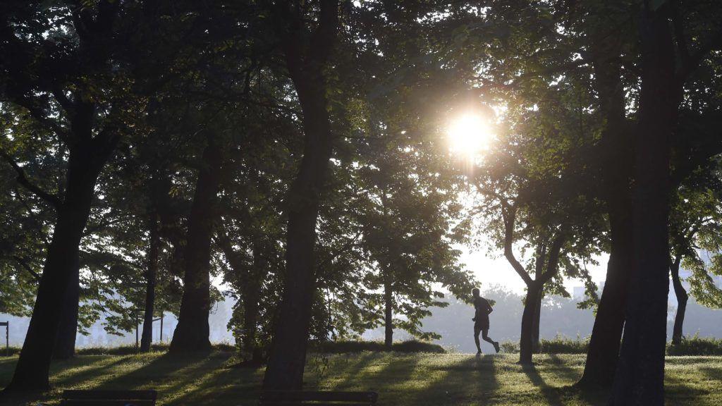 Budapest, 2018. május 26. Egy futó a fõvárosi Margit-szigeten 2018. május 26-án reggel. MTI Fotó: Bruzák Noémi