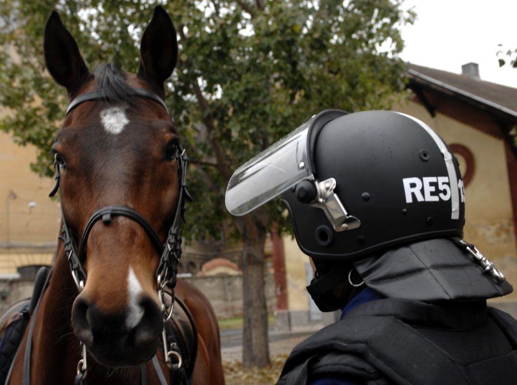 Budapest, 2006. november 10. Az utcai zavargások megfékézésére is használt rendõrló és lovasa azonosító jellel ellátott sisakban Budapesten, a Rendészeti Biztonsági Szolgálat (REBISZ) lovas alosztályánál. MTI Fotó: H. Szabó Sándor