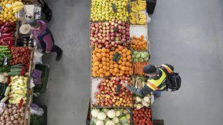 Budapest, 2019. március 27. A Nemzeti Élelmiszerlánc-biztonsági Hivatal (Nébih) növényitermék-ellenõr munkatársa rutinellenõrzést végez az Újpesti Piacon 2019. március 27-én. MTI/Mohai Balázs