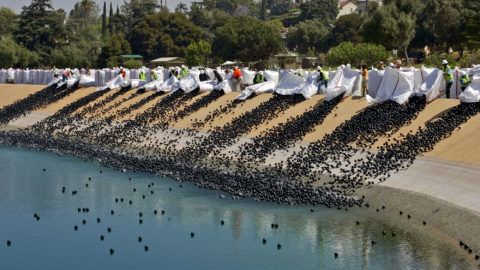"""DWP workers are emptying out bales of plastic balls in Ivanhoe reservoir on June 09, 2008 morning in Los Angeles. Department of Water and Power released about 400,000 black plastic 4"""" balls as the first installment of approximately 3 million such balls to form a floating cover over 7 acres of the reservoir. The whole process is to protect drinking water from sunlight that generates harmful bromide.  (Photo by Irfan Khan/Los Angeles Times via Getty Images)"""