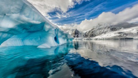/Iceberg floats in Andord Bay on Graham Land, Antarctic in November