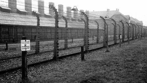 Les barbelÈs du camp de concentration d'Auschwitz (Pologne).     RV-759437