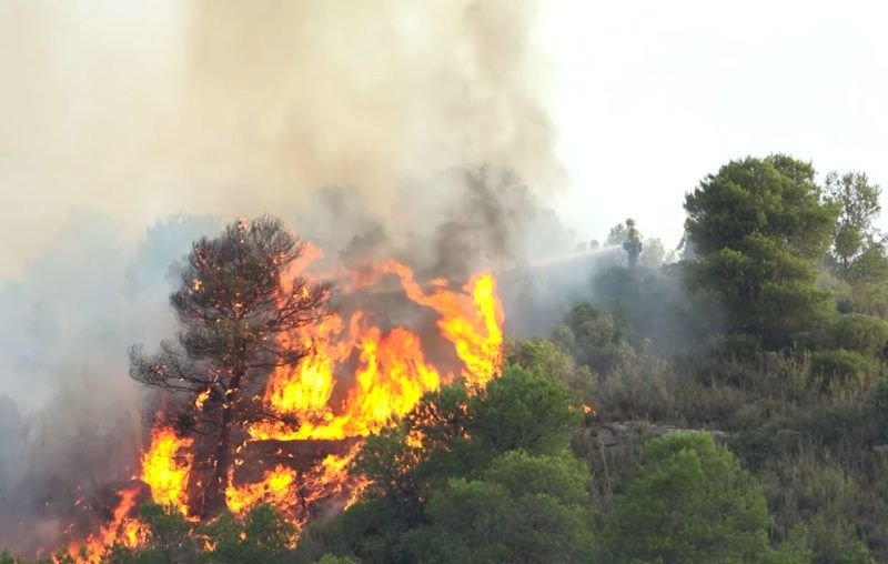 """An image grab taken from a video released on June 27, 2019 by the Spanish Emergency Military Unit (UME) shows a fireman trying to extinguish a wildfire near Torre de l´Espanyol in Ribera d´Ebro, on the banks of the river Ebre, northeastern Spain. - A forest fire in Spain raged out of control amid a Europe-wide heatwave, devouring land despite the efforts of hundreds of firefighters who worked through the night. The blaze broke out on June 26, 2019 in the northeastern region of Catalonia and has destroyed more than 4,000 hectares. (Photo by Handout / UME / AFP) / RESTRICTED TO EDITORIAL USE - MANDATORY CREDIT """"AFP PHOTO / HANDOUT / UME """" - NO MARKETING - NO ADVERTISING CAMPAIGNS - DISTRIBUTED AS A SERVICE TO CLIENTS"""