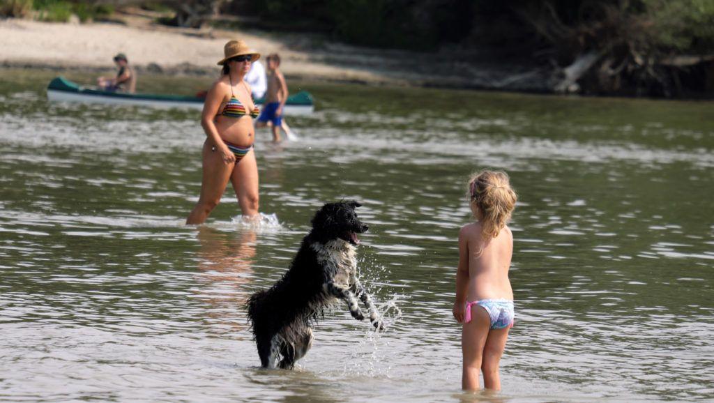 Nagymaros, 2018. augusztus 5. Egy kislány kutyájával játszik az alacsony vízállású Duna medrében.  MTVA/Bizományosi: Nagy Zoltán  *************************** Kedves Felhasználó! Ez a fotó nem a Duna Médiaszolgáltató Zrt./MTI által készített és kiadott fényképfelvétel, így harmadik személy által támasztott bárminemû – különösen szerzõi jogi, szomszédos jogi és személyiségi jogi – igényért a fotó készítõje közvetlenül maga áll helyt, az MTVA felelõssége e körben kizárt.