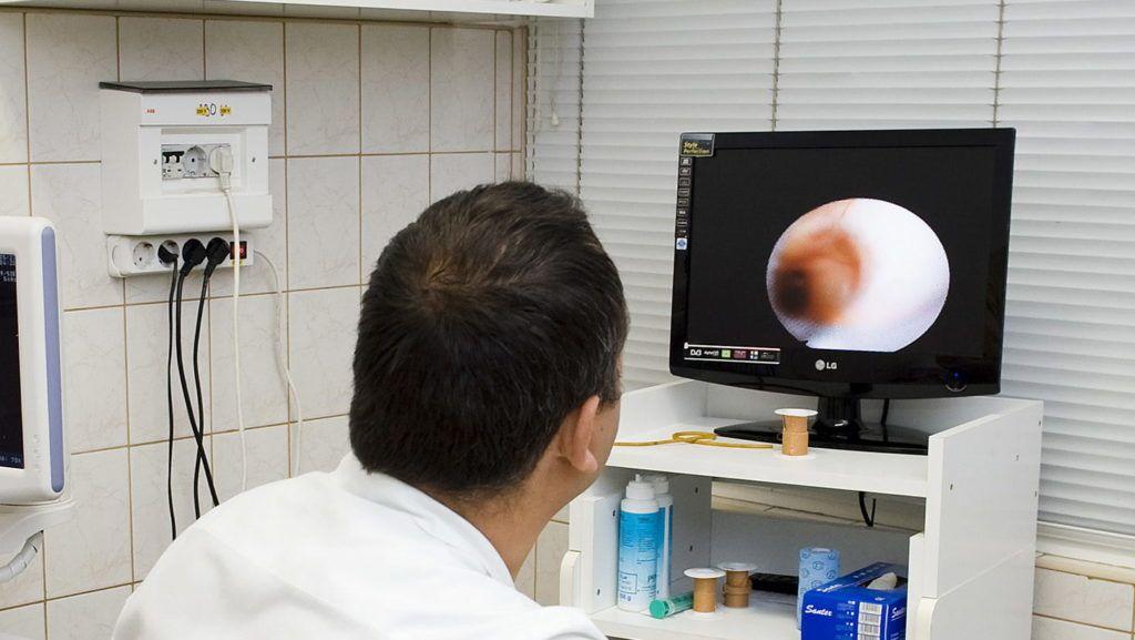 Nyíregyháza, 2011. május 27. Pelle György, a Nyíregyházi Állatkórház állatorvosa endoszkóppal megvizsgálja az altatásban lévõ hétéves gepárdlány, Pippa emésztõrendszerét. A Nyíregyházi Állatpark egyik különlegességét emésztési zavarok bántották, ezért egy átfogó belgyógyászati kivizsgálásra a Nyíregyházi Állatkórházba szállították. A világ leggyorsabb állata nagyon érzékeny faj, ezért a családalapítás elõtt a gepárdlány különös figyelmet igényel. A vizsgálatok megnyugtató eredménnyel zárultak. MTI Fotó: Balázs Attila