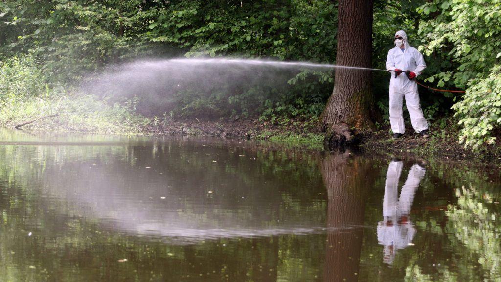 Miskolc, 2017. június 6. A Miskolci Városgazda Nonprofit Kft. munkatársa szúnyogirtó vegyszert permetez Miskolc határában a Juhdöglõ völgyi-tónál 2017. június 6-án. A földi biológiai irtás környezetbarát, a vegyszert a szúnyoglárva tenyészõhelyén közvetlenül a rovarok élõhelyére permetezik, amely a szúnyoglárva elpusztítását követõen teljesen lebomlik, ezért a környezetet nem károsítja. MTI Fotó: Vajda János