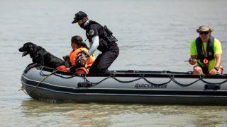 Dunaújváros, 2019. június 7.Speciálisan kiképzett személykereső kutya segítségével keresik a Hableány turistahajó május 29-én történt balesetének áldozatait Dunaújváros térségében 2019. június 7-én. A kutatásban a szolnoki Életjel Mentőcsoport és a Miskolci Speciális Felderítő- és Mentőcsoport kutyái mellett a Szegedi Vízimentő és Tűzoltó Szakszolgálat, a Folyami Katasztrófavédelem és Speciális Mentőegyesület tagjai, valamint dél-koreai szakemberek is részt vesznek. A Hableány május 29-én süllyedt el a Margit hídnál, miután összeütközött a Viking Sigyn szállodahajóval. A fedélzeten 35-en utaztak, 33 dél-koreai állampolgár és a kéttagú magyar személyzet. Hét embert sikerült kimenteni, hét dél-koreai állampolgár holttestét pedig még aznap megtalálták. Azóta további tizenkét áldozat, köztük a Hableány matrózának holttestét találták meg és azonosították.MTI/Mohai Balázs