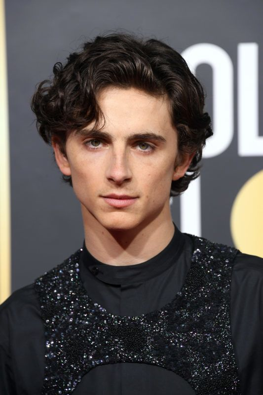 BEVERLY HILLS, CA - JANUARY 06:   Timothee Chalamet attends the 76th Annual Golden Globe Awards at The Beverly Hilton Hotel on January 6, 2019 in Beverly Hills, California.  (Photo by Steve Granitz/WireImage)